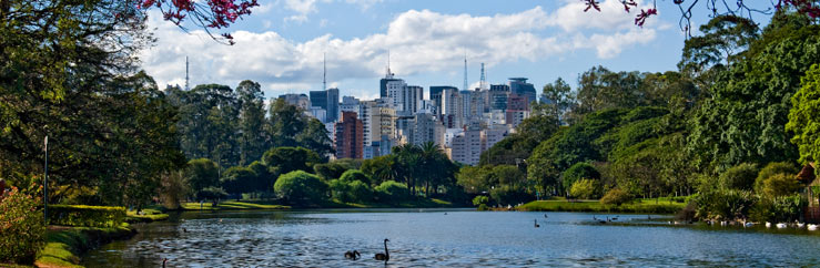 Home Stay or Hotel Accommodation in São Paulo - © Bruce McIntosh