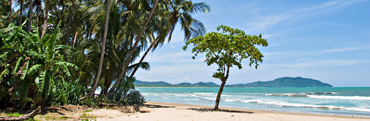 Playa Tamarindo Spanish Language School, Language Courses and Language Travel  - © Antonio Nunes