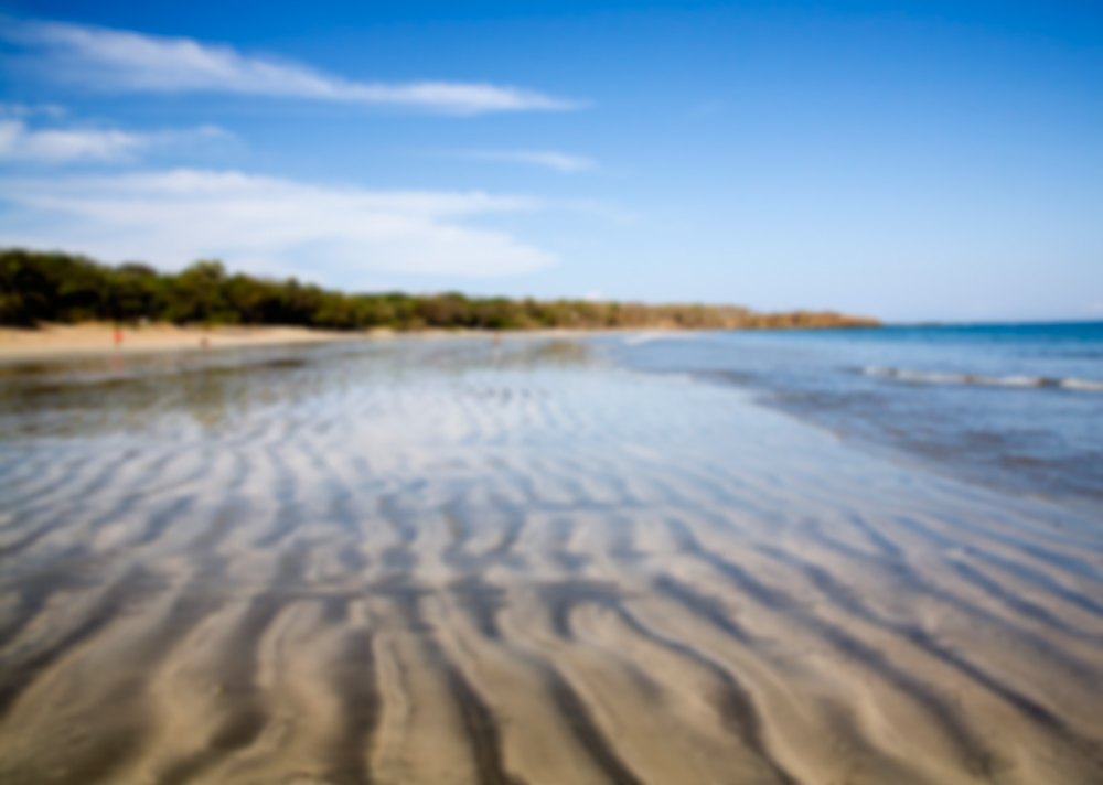 Learn Spanish in Playa Tamarindo
