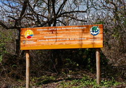 Learn Spanish on the Galapagos Islands at San Cristóbal School